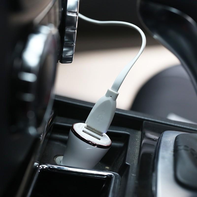 Remax USB X 2 Dolfin Car Charger